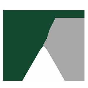 Asinsa Capital